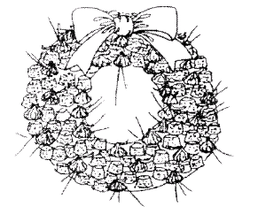http://insanescouter.org/Assets/Content/Nov_NL_Images/wreath.png
