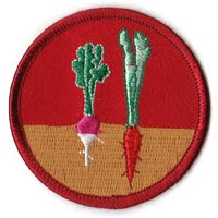 Urban Land Scout Patrol Patch